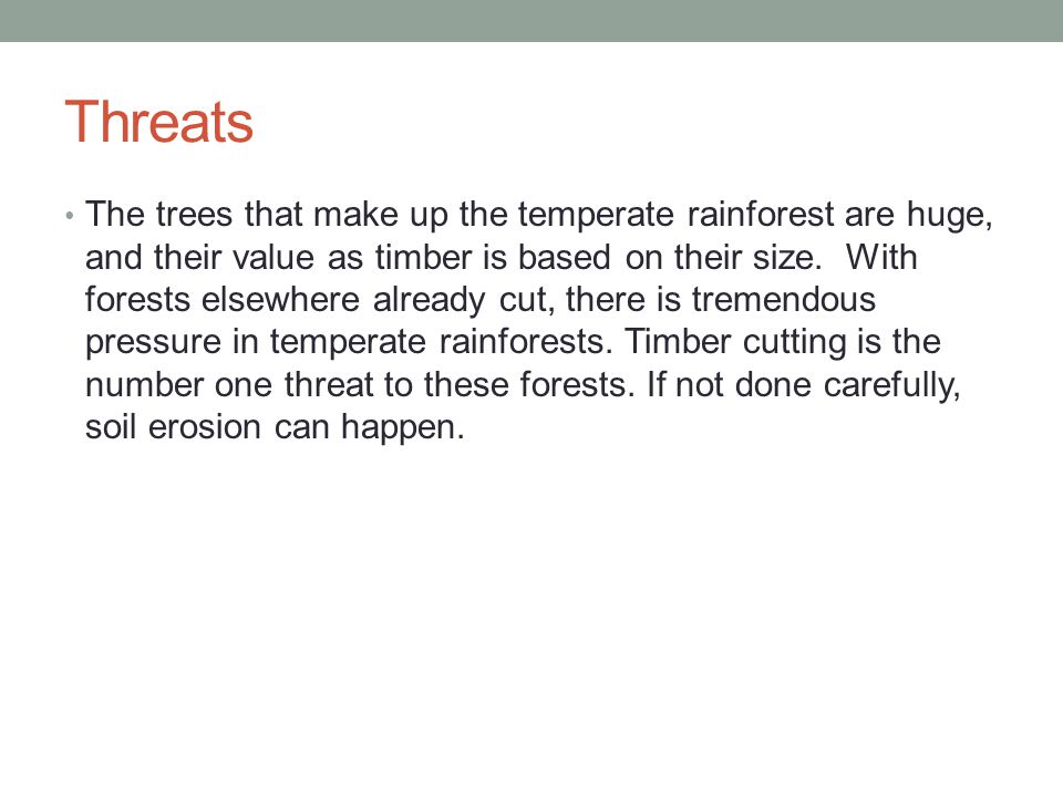 Threats The trees that make up the temperate rainforest are huge, and their value as timber is based on their size.