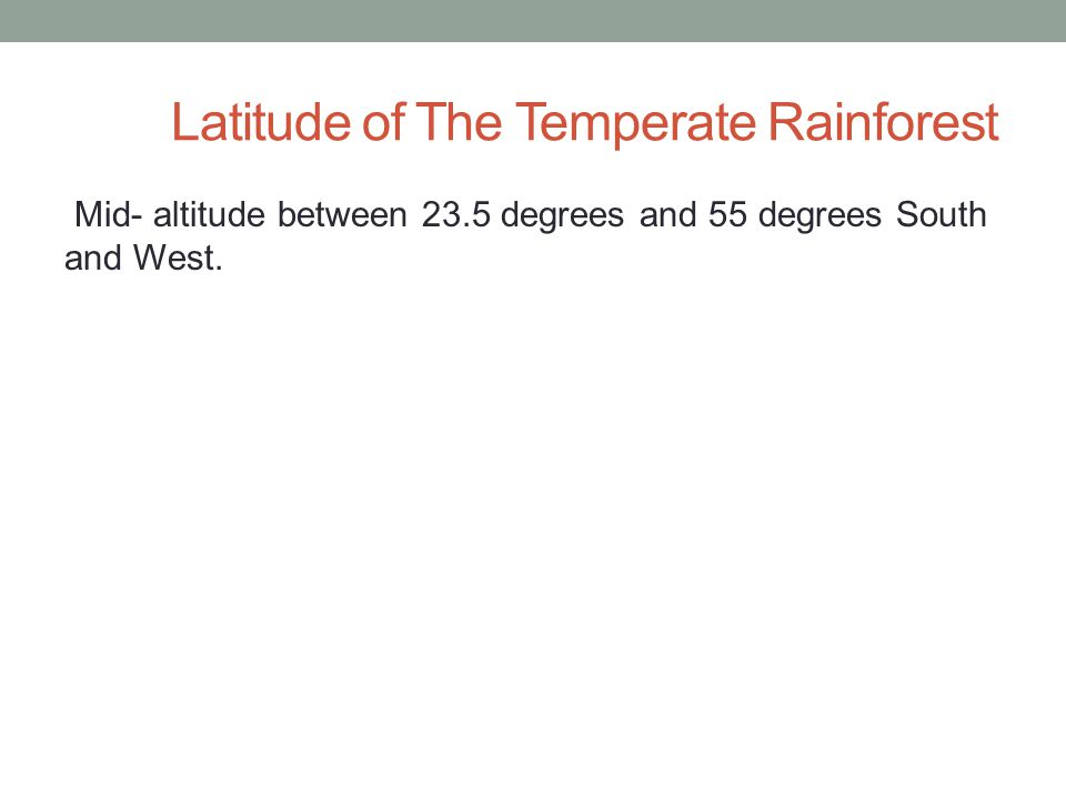 Latitude of The Temperate Rainforest Mid- altitude between 23.5 degrees and 55 degrees South and West.