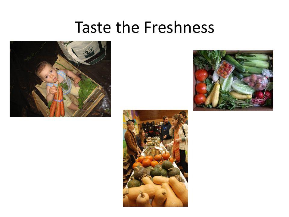 Taste the Freshness