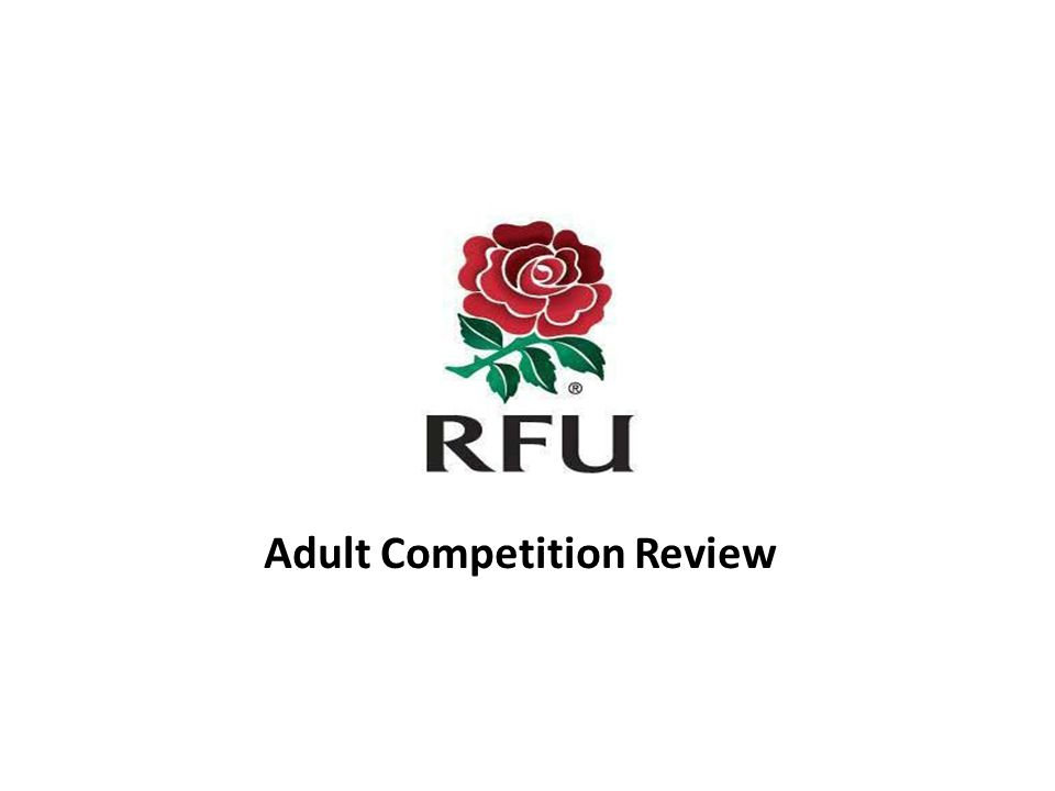 Adult Competition Review