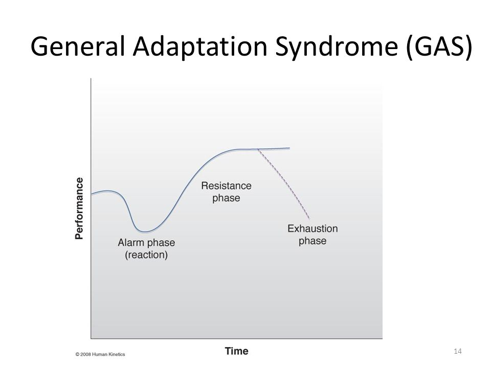 General Adaptation Syndrome (GAS) 14