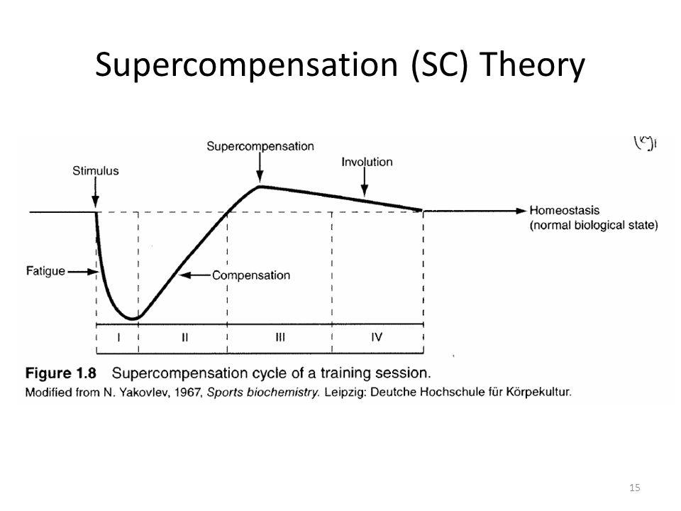 Supercompensation (SC) Theory 15