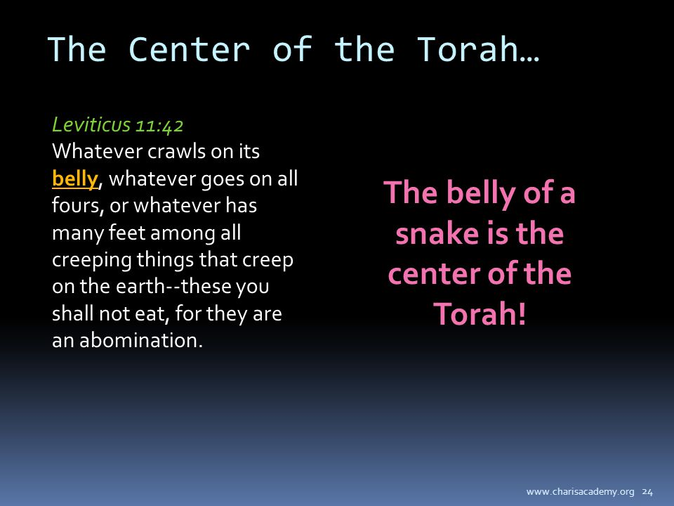 www.charisacademy.org 24 The Center of the Torah… Leviticus 11:42 Whatever crawls on its belly, whatever goes on all fours, or whatever has many feet among all creeping things that creep on the earth--these you shall not eat, for they are an abomination.