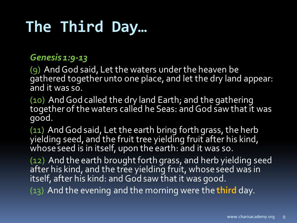 9 The Third Day… Genesis 1:9-13 (9) And God said, Let the waters under the heaven be gathered together unto one place, and let the dry land appear: and it was so.