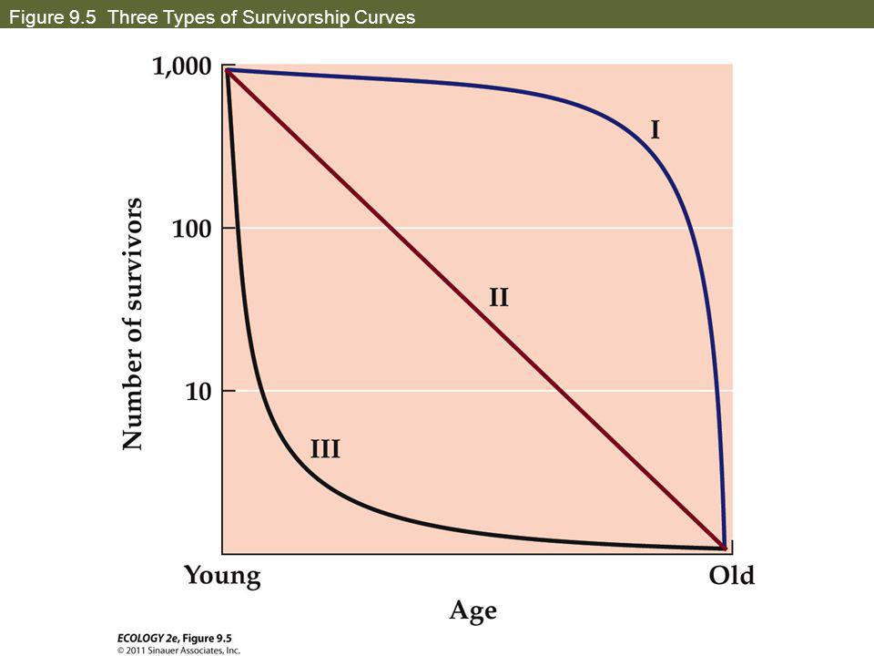 Figure 9.5 Three Types of Survivorship Curves