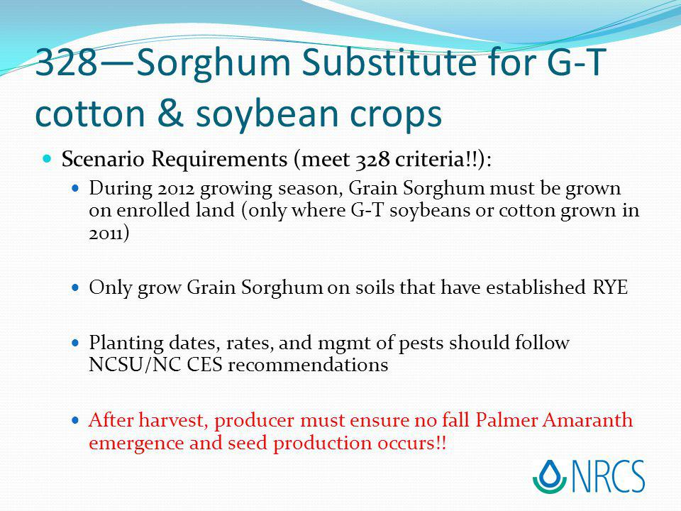 Scenario Requirements (meet 328 criteria!!): During 2012 growing season, Grain Sorghum must be grown on enrolled land (only where G-T soybeans or cotton grown in 2011) Only grow Grain Sorghum on soils that have established RYE Planting dates, rates, and mgmt of pests should follow NCSU/NC CES recommendations After harvest, producer must ensure no fall Palmer Amaranth emergence and seed production occurs!.