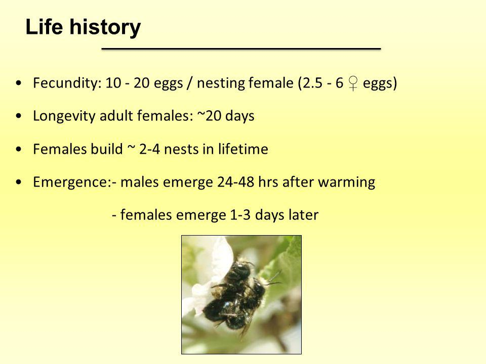 Fecundity: 10 - 20 eggs / nesting female (2.5 - 6 eggs) Longevity adult females: ~20 days Females build ~ 2-4 nests in lifetime Emergence:- males emer