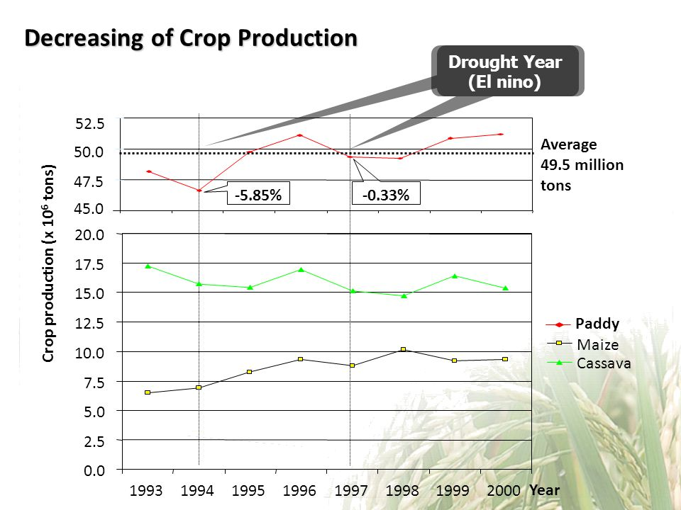 Decreasing of Crop Production Drought Year (El nino) -0.33% -5.85% 45.0 47.5 50.0 52.5 Paddy Crop production (x 10 6 tons) Year Average 49.5 million tons 0.0 2.5 5.0 7.5 10.0 12.5 15.0 17.5 20.0 19931994199519961997199819992000 Maize Cassava
