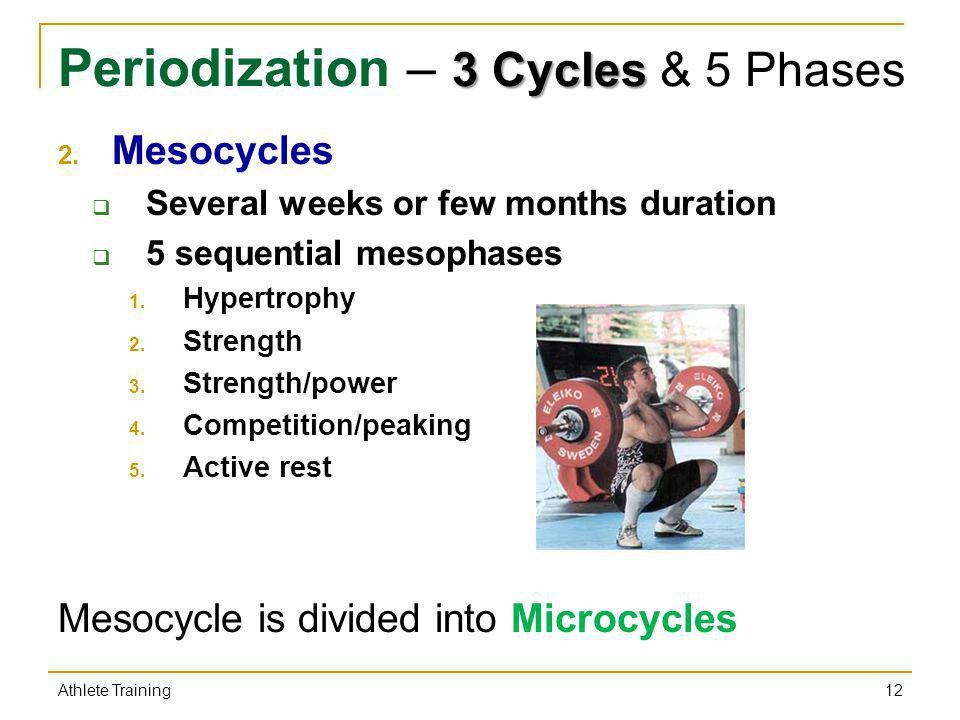 3 Cycles Periodization – 3 Cycles & 5 Phases 2. Mesocycles Several weeks or few months duration 5 sequential mesophases 1. Hypertrophy 2. Strength 3.