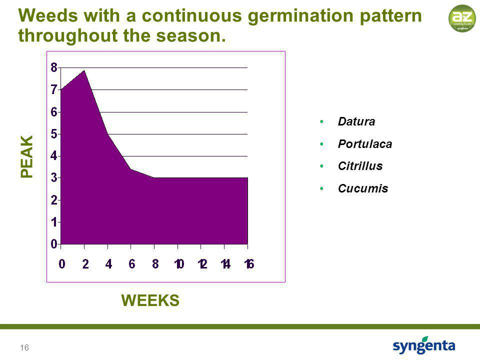 16 PEAK WEEKS Datura Portulaca Citrillus Cucumis Weeds with a continuous germination pattern throughout the season.