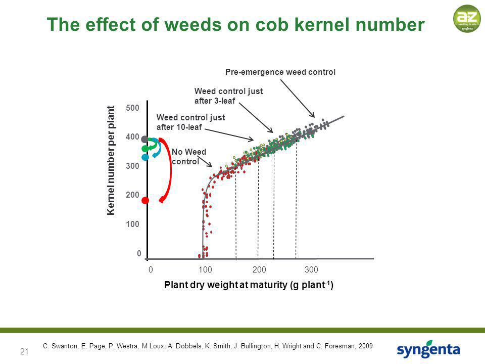 21 Plant dry weight at maturity (g plant -1 ) 0 100 200 300 Pre-emergence weed control Weed control just after 10-leaf No Weed control The effect of weeds on cob kernel number 500 400 300 200 100 0 Kernel number per plant C.