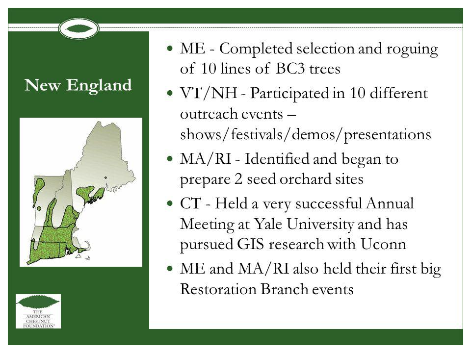 New England ME - Completed selection and roguing of 10 lines of BC3 trees VT/NH - Participated in 10 different outreach events – shows/festivals/demos/presentations MA/RI - Identified and began to prepare 2 seed orchard sites CT - Held a very successful Annual Meeting at Yale University and has pursued GIS research with Uconn ME and MA/RI also held their first big Restoration Branch events