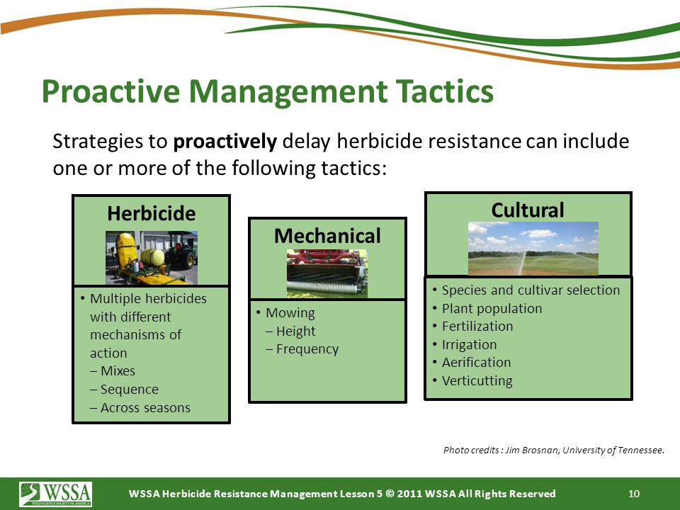 WSSA Herbicide Resistance Management Lesson 5 © 2011 WSSA All Rights Reserved 10 Proactive Management Tactics Strategies to proactively delay herbicid