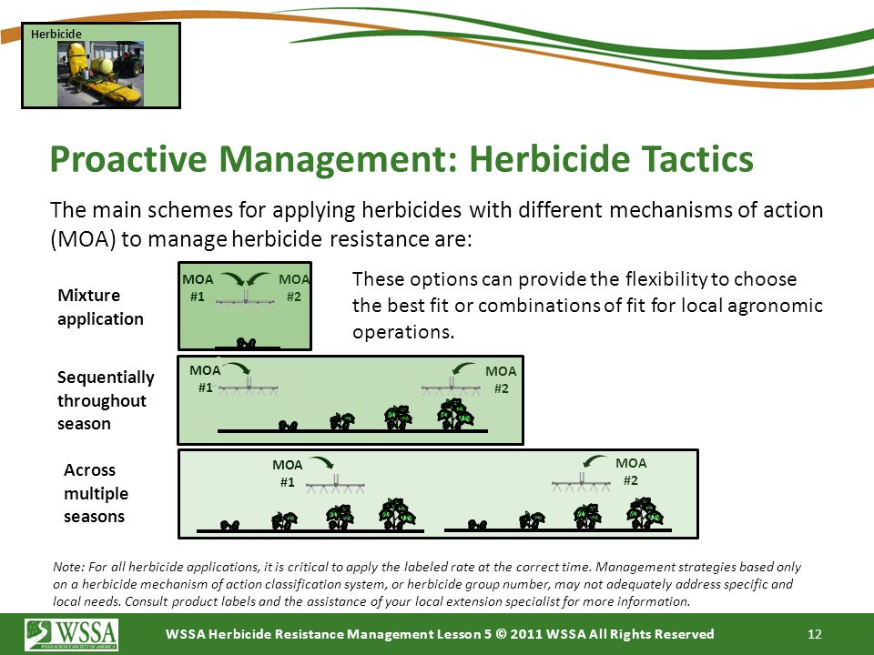WSSA Herbicide Resistance Management Lesson 5 © 2011 WSSA All Rights Reserved 12 Proactive Management: Herbicide Tactics Herbicide MOA #1 MOA #2 Mixtu