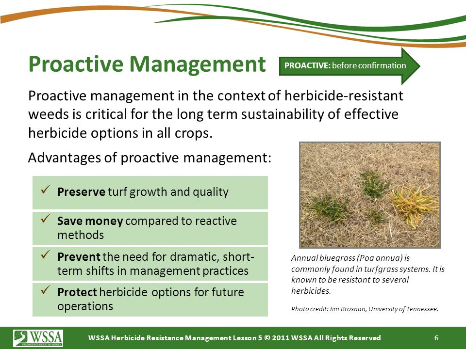 WSSA Herbicide Resistance Management Lesson 5 © 2011 WSSA All Rights Reserved 6 Proactive Management Proactive management in the context of herbicide-
