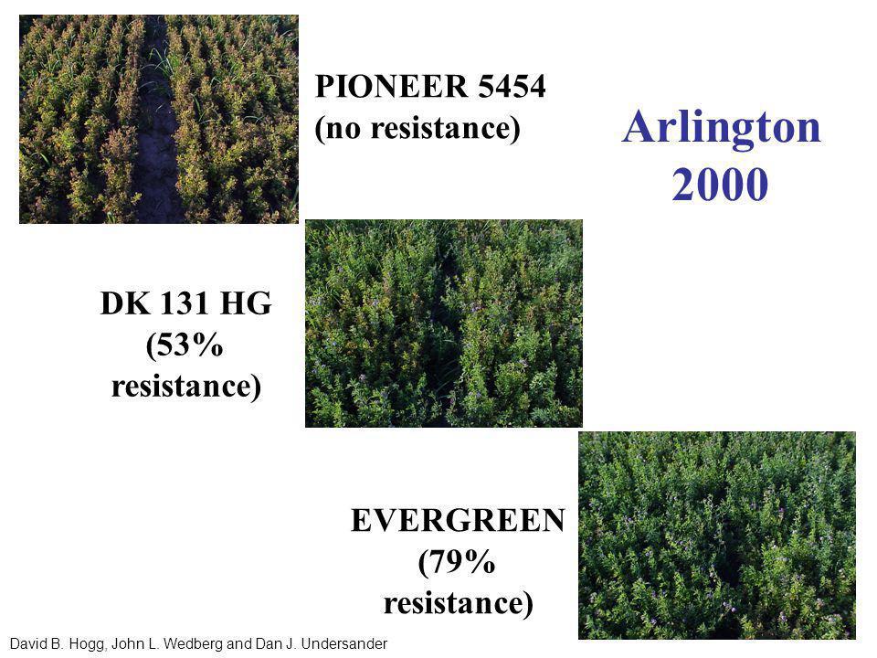 PIONEER 5454 (no resistance) DK 131 HG (53% resistance) EVERGREEN (79% resistance) Arlington 2000 David B.