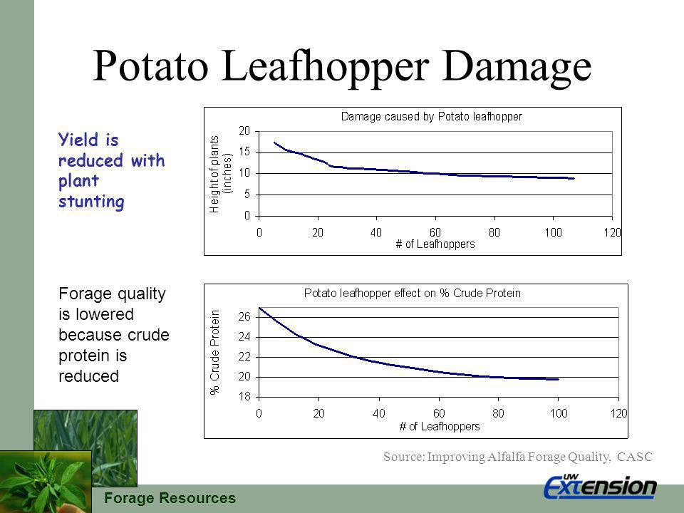 Forage Resources Potato Leafhopper Resistance New seedings should be sprayed at same threshold as non-resistant varieties With potato leafhopper resistance greater than 50% thresholds can be increased up to 2 times before spraying is necessary.