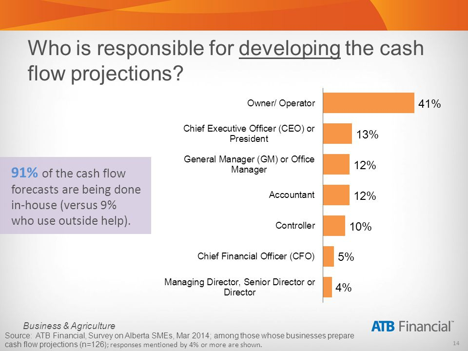 14 Business & Agriculture Who is responsible for developing the cash flow projections.