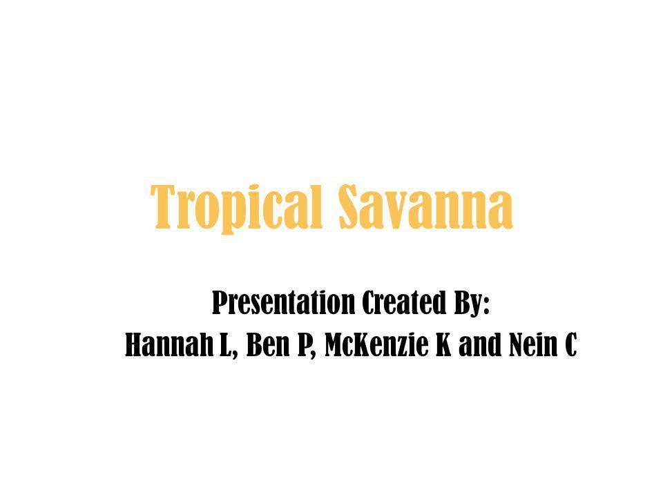 Tropical Savanna Presentation Created By: Hannah L, Ben P, McKenzie K and Nein C
