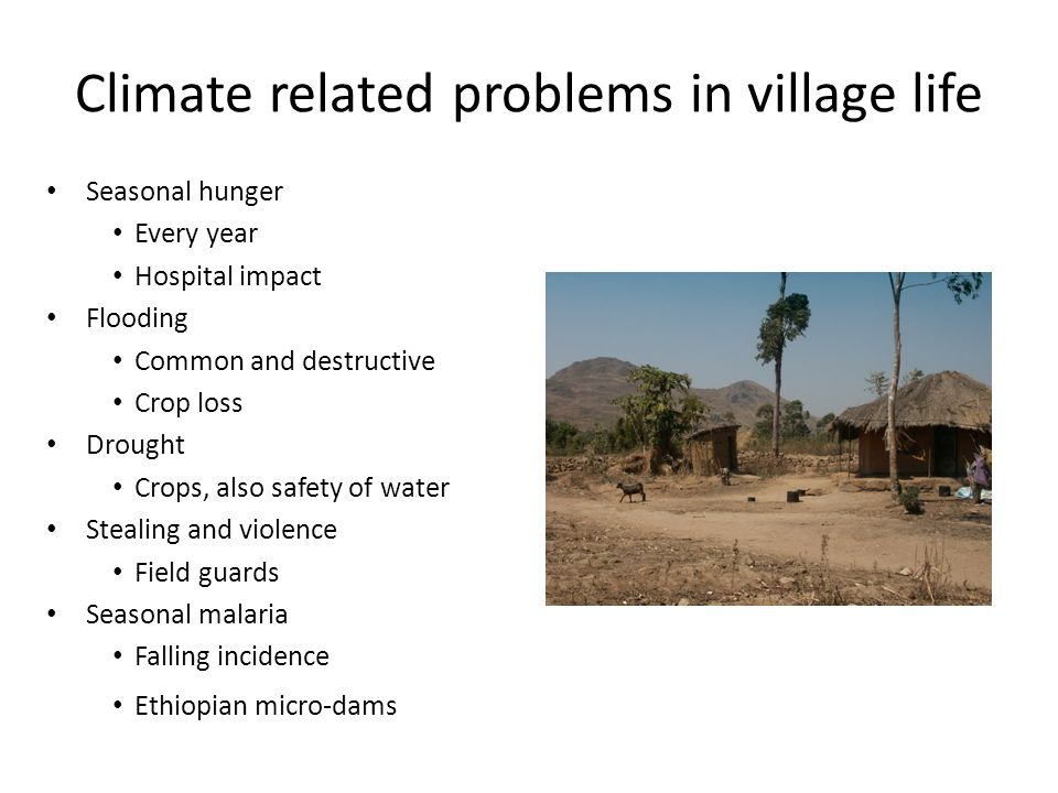 Climate related problems in village life Seasonal hunger Every year Hospital impact Flooding Common and destructive Crop loss Drought Crops, also safety of water Stealing and violence Field guards Seasonal malaria Falling incidence Ethiopian micro-dams
