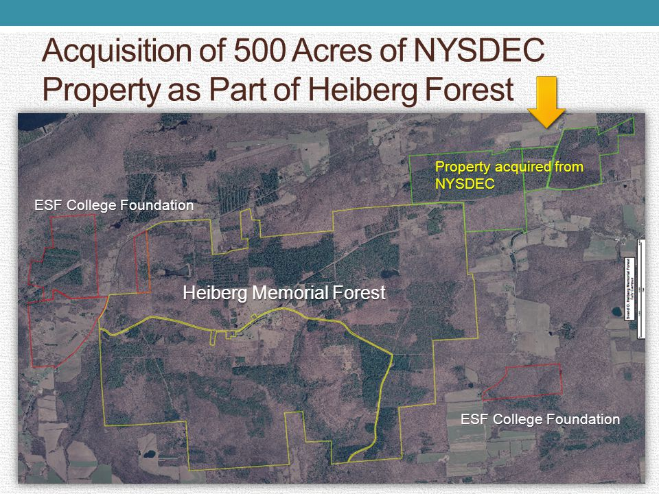 Acquisition of 500 Acres of NYSDEC Property as Part of Heiberg Forest ESF College Foundation Heiberg Memorial Forest ESF College Foundation Property acquired from NYSDEC ESF College Foundation