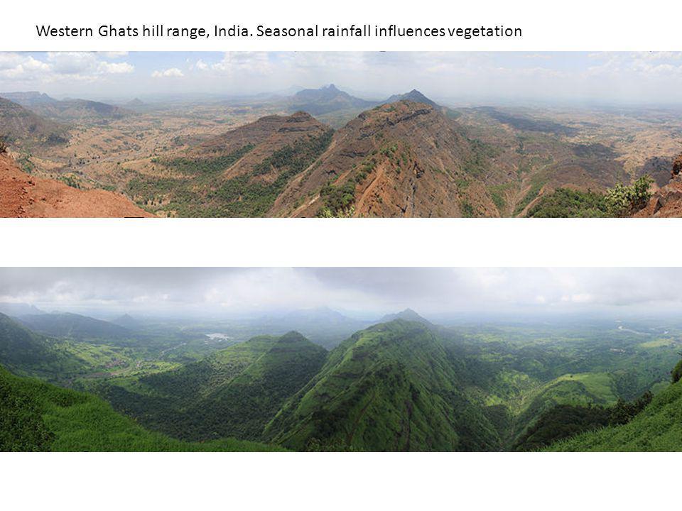 Western Ghats hill range, India. Seasonal rainfall influences vegetation