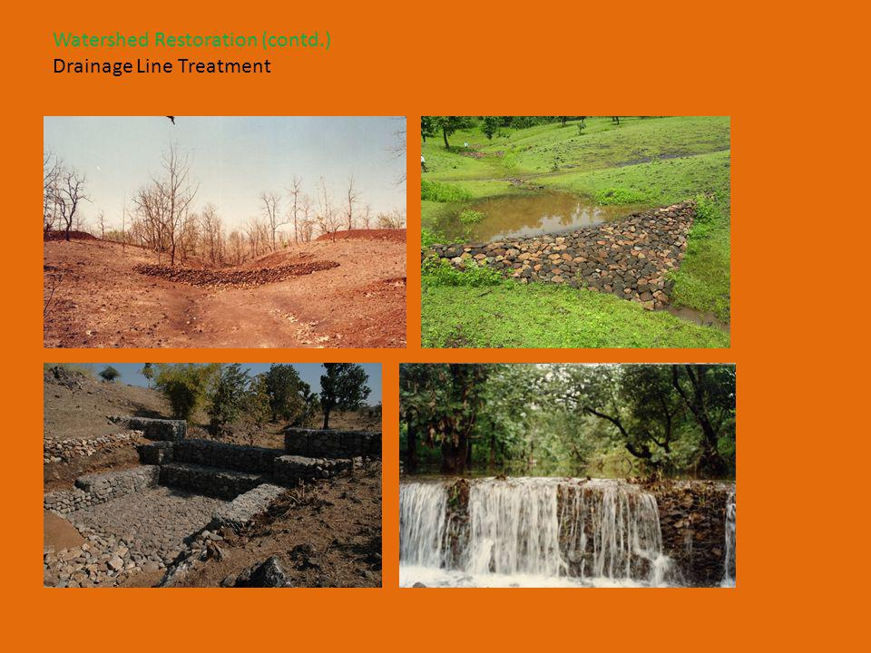 Watershed Restoration (contd.) Drainage Line Treatment
