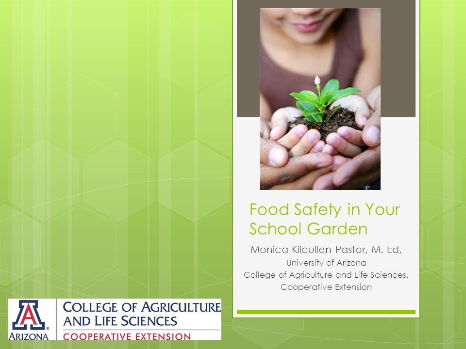 Food Safety in Your School Garden Monica Kilcullen Pastor, M.