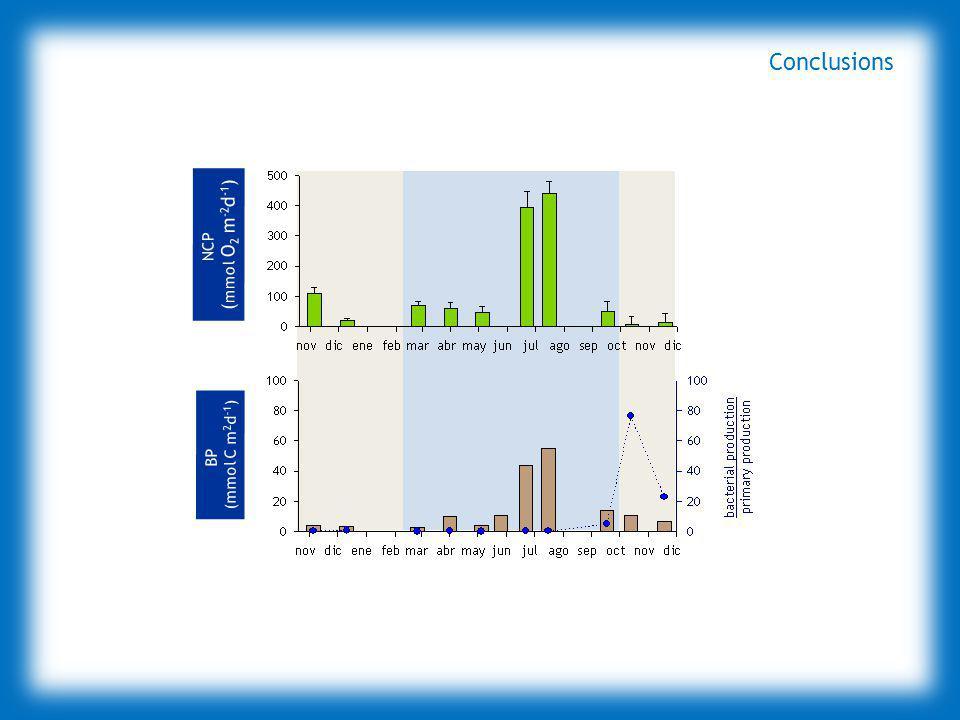 NCP ( mmol O 2 m -2 d -1 ) BP (mmol C m 2 d -1 ) NCP ( mmol O 2 m -2 d -1 ) BP (mmol C m 2 d -1 ) Conclusions