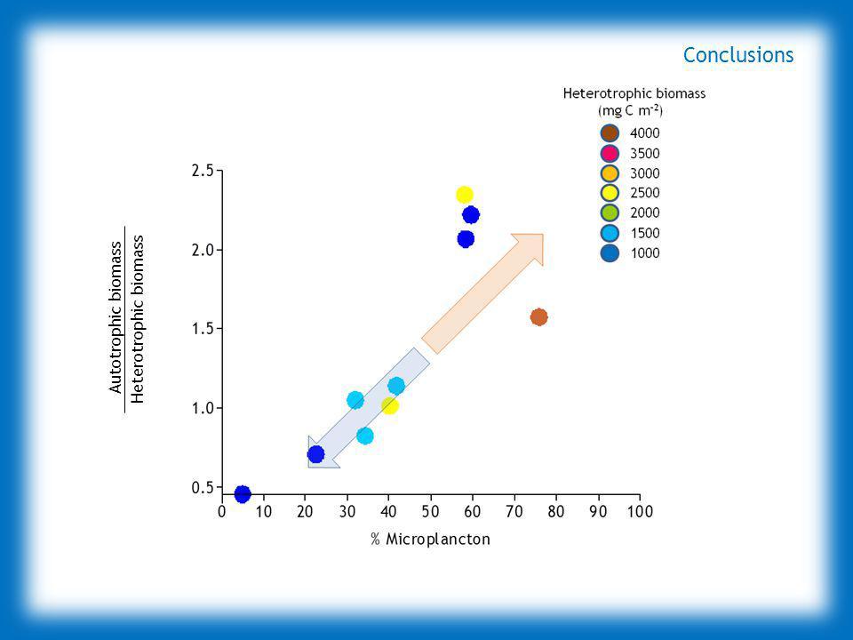 6 0 4 2 1 0.5 NCP (g C m -2 d -1 ) Autotrophic biomass Heterotrophic biomass Conclusions