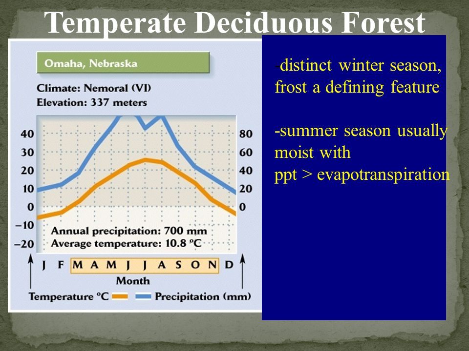 -distinct winter season, frost a defining feature -summer season usually moist with ppt > evapotranspiration Temperate Deciduous Forest