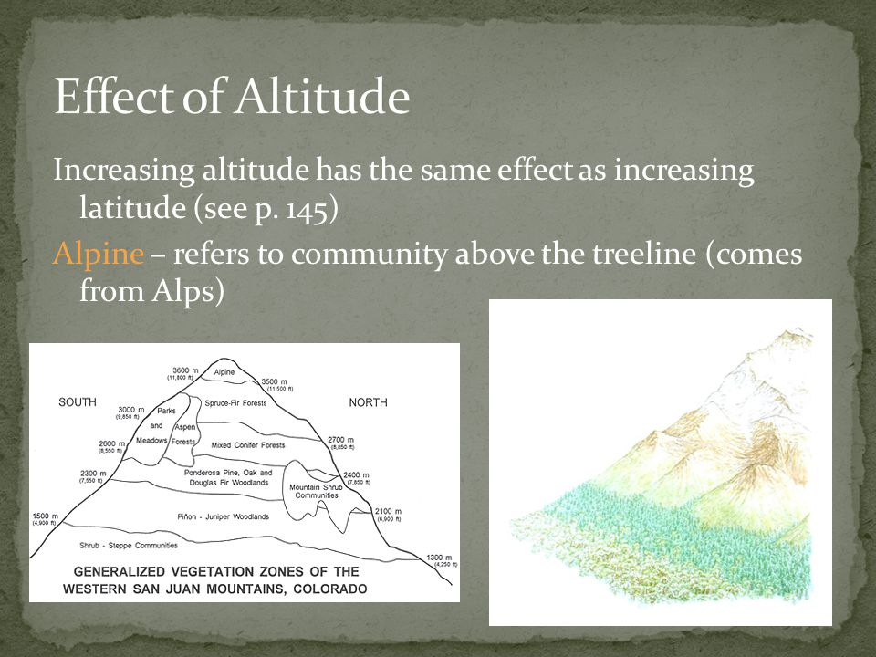 Increasing altitude has the same effect as increasing latitude (see p.