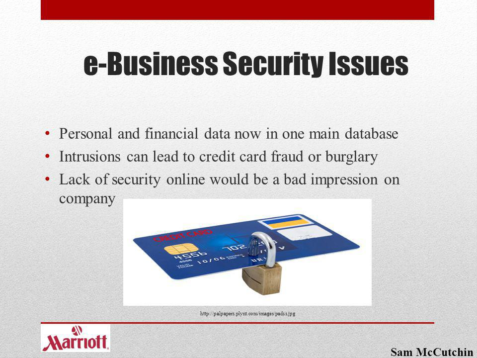 e-Business Security Issues Personal and financial data now in one main database Intrusions can lead to credit card fraud or burglary Lack of security