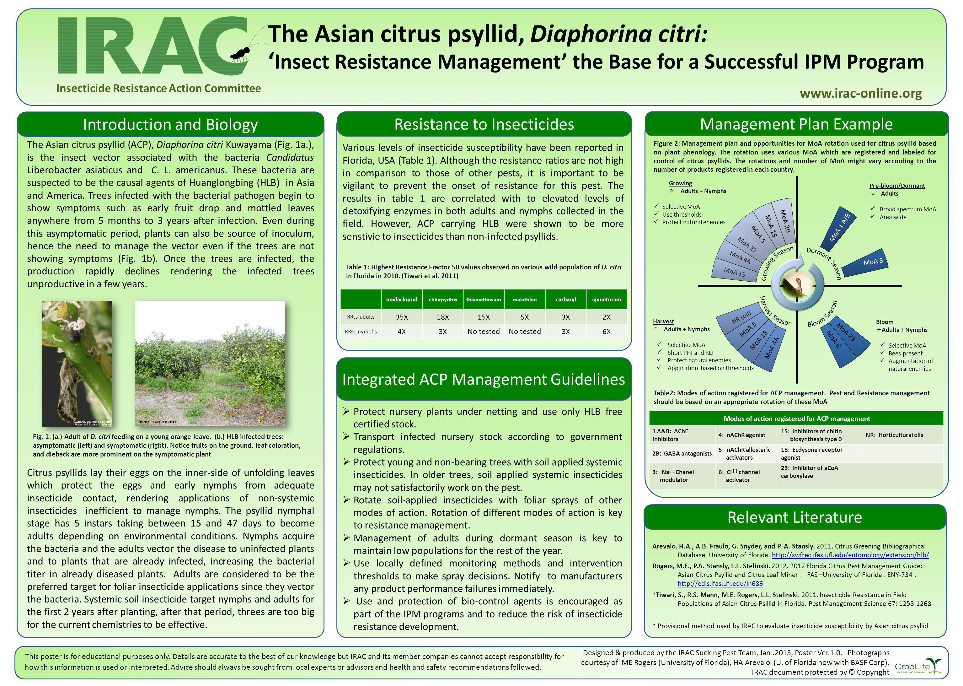 The Asian citrus psyllid, Diaphorina citri: Insect Resistance Management the Base for a Successful IPM Program www.irac-online.org Introduction and Biology The Asian citrus psyllid (ACP), Diaphorina citri Kuwayama (Fig.