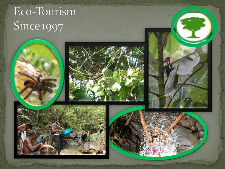 FACRP has received numerous awards over the years for our efforts in Environmental Conservation and Community outreach such as; The Champion of the Environment award 2008 Presidents Awards: The Humming bird Gold Medal 2007 Tidy T&T 2002 -2003 EMAs Green Leaf awards Environmental Conservation [2001,2003, 2007] BPTT leaders Award 2001