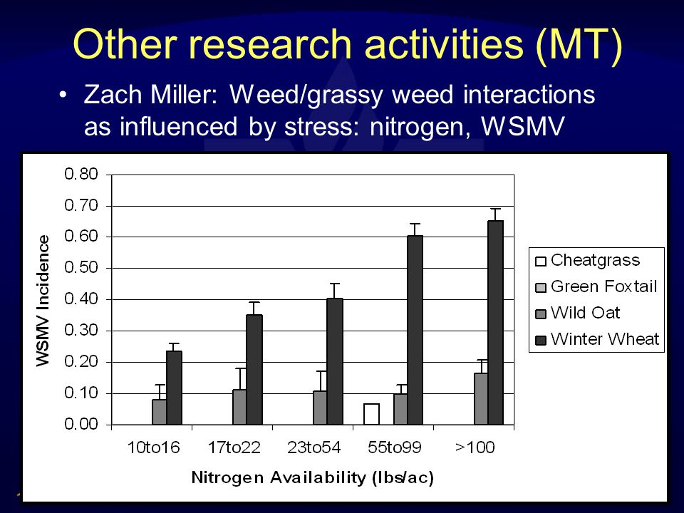 Other research activities (MT) Zach Miller: Weed/grassy weed interactions as influenced by stress: nitrogen, WSMV
