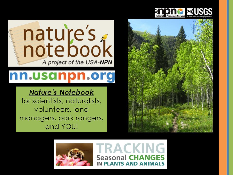 Natures Notebook for scientists, naturalists, volunteers, land managers, park rangers, and YOU.