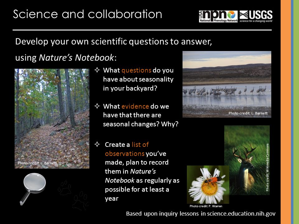 Science and collaboration Develop your own scientific questions to answer, using Natures Notebook: What questions do you have about seasonality in you