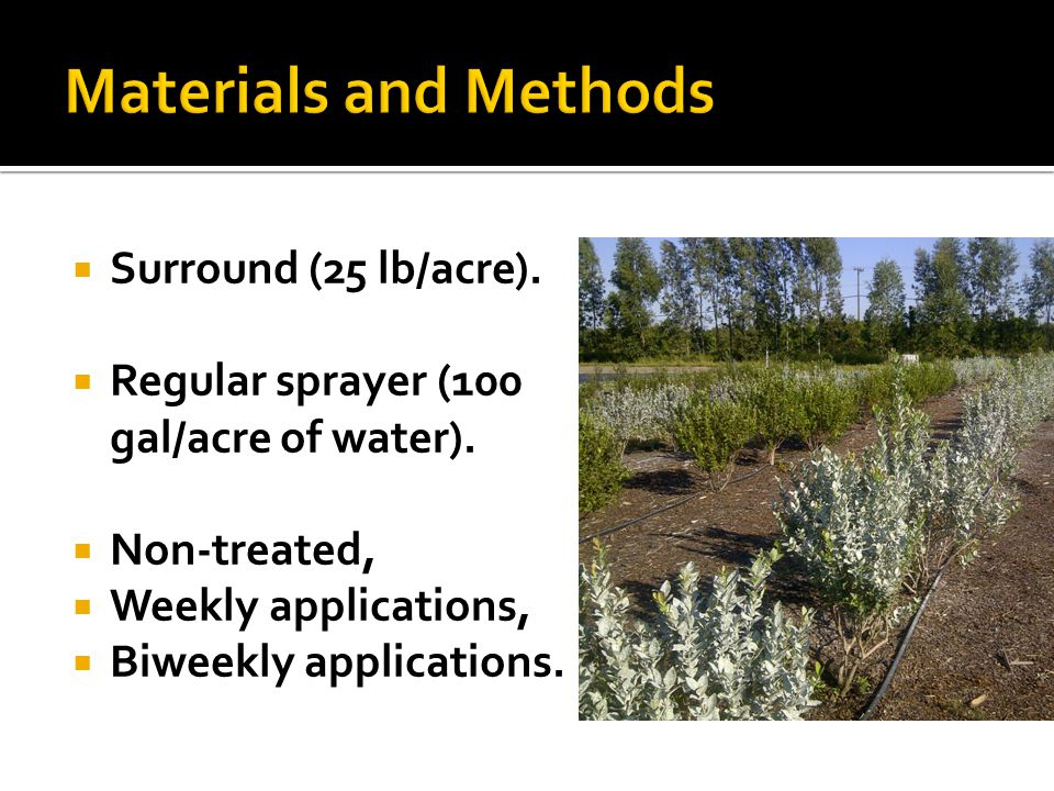 Surround (25 lb/acre). Regular sprayer (100 gal/acre of water). Non-treated, Weekly applications, Biweekly applications.