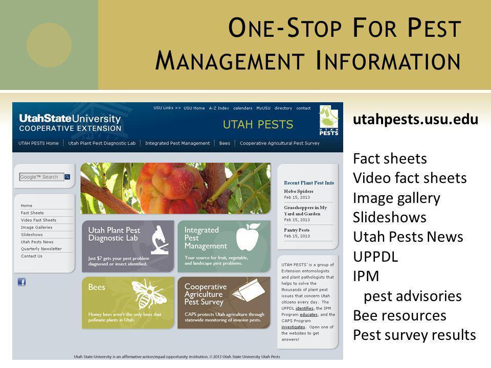 O NE -S TOP F OR P EST M ANAGEMENT I NFORMATION utahpests.usu.edu Fact sheets Video fact sheets Image gallery Slideshows Utah Pests News UPPDL IPM pest advisories Bee resources Pest survey results