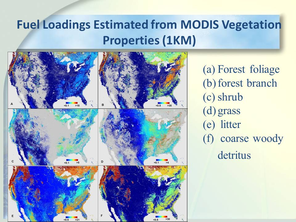 Fuel Loadings Estimated from MODIS Vegetation Properties (1KM) (a)Forest foliage (b)forest branch (c)shrub (d)grass (e) litter (f) coarse woody detritus