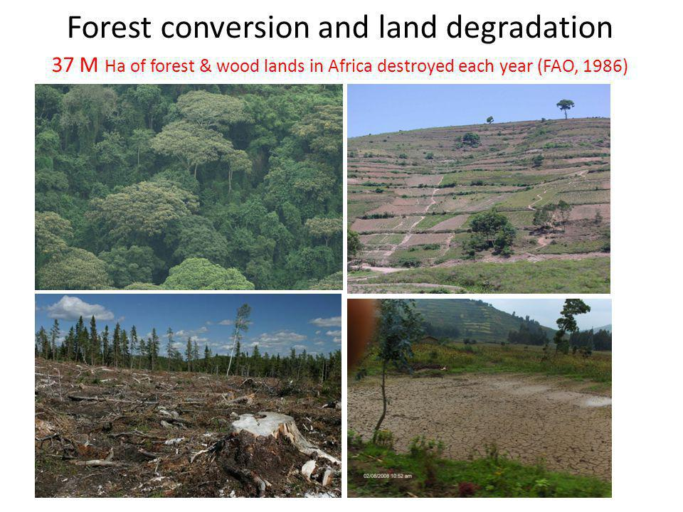 Forest conversion and land degradation 37 M Ha of forest & wood lands in Africa destroyed each year (FAO, 1986)