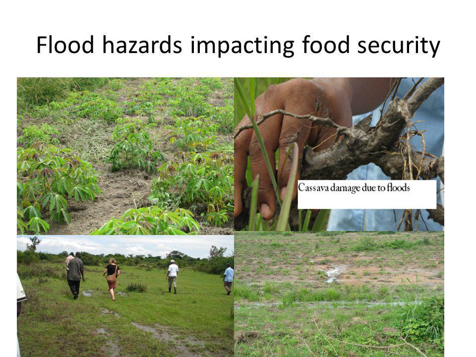 Flood hazards impacting food security