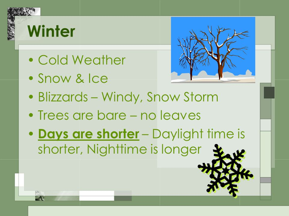 Winter Cold Weather Snow & Ice Blizzards – Windy, Snow Storm Trees are bare – no leaves Days are shorter – Daylight time is shorter, Nighttime is longer