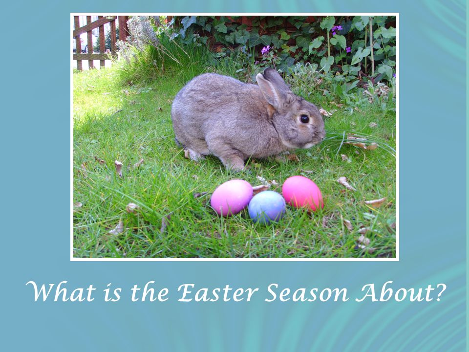 What is the Easter Season About