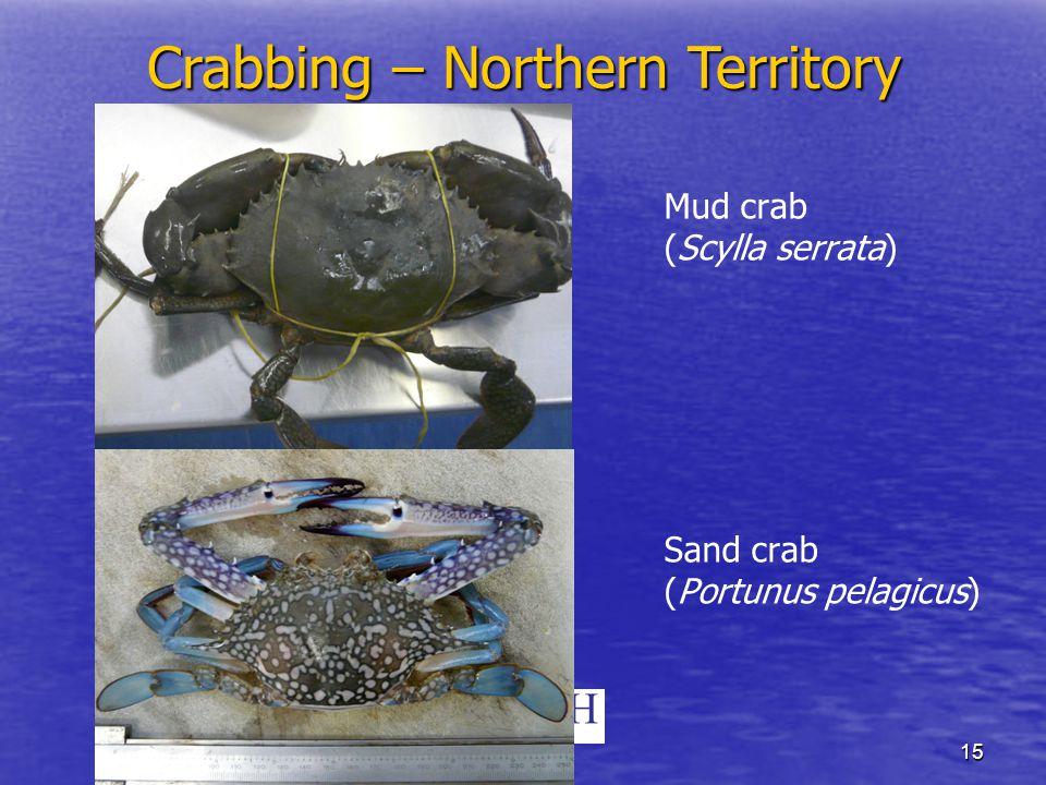 15 Mud crab (Scylla serrata) Sand crab (Portunus pelagicus) Crabbing – Northern Territory