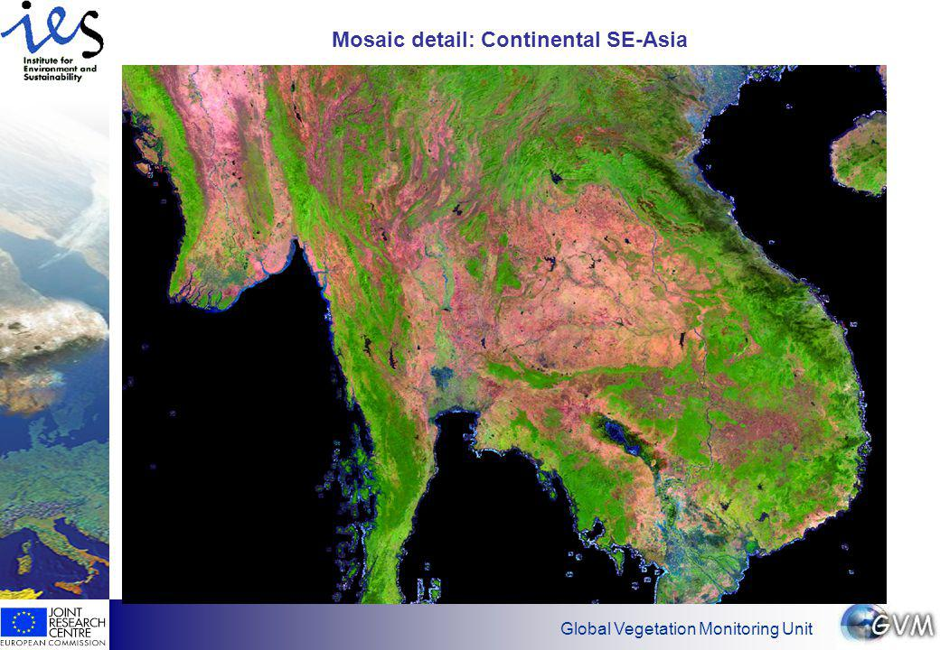 Global Vegetation Monitoring Unit Mosaic detail: Continental SE-Asia