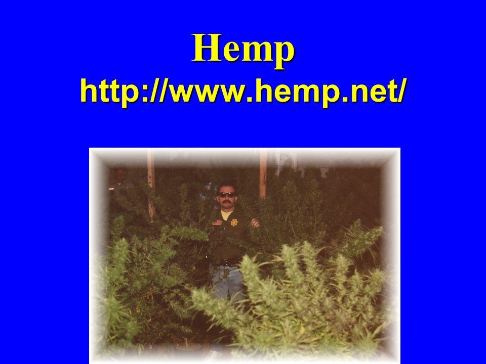 Hemp http://www.hemp.net/