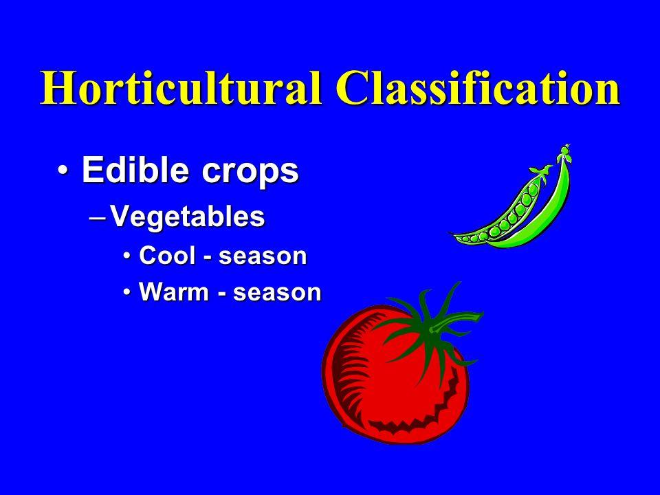 Horticultural Classification Edible cropsEdible crops –Vegetables Cool - seasonCool - season Warm - seasonWarm - season