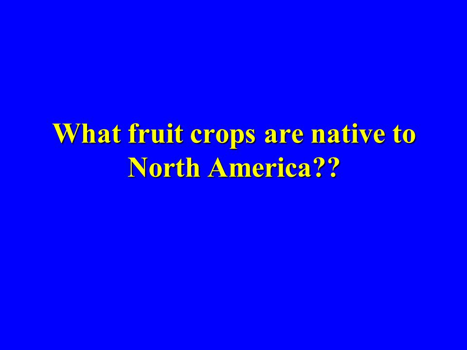 What fruit crops are native to North America??